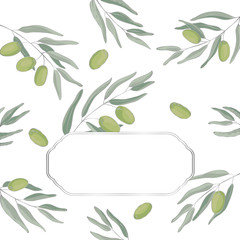 vector contour color silver green olive plant border frame rectangle card on white for your text
