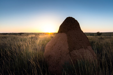 Wall Mural - Australia Outback