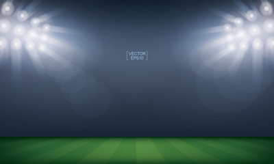 Football field or soccer field stadium background. Vector.