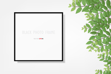 Photo frame or picture frame background with branch green leaf. Vector.