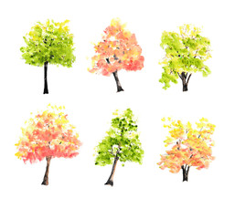 Autumn trees and green trees on white background, tree set, watercolor hand painted