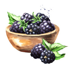 Bowl with ripe blackberry. Watercolor hand drawn illustration, isolated on white background