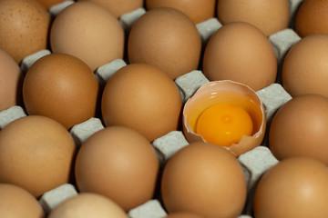 cracked chicken eggs in carton box with albumen and yolk .