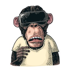 Monkey wearing virtual reality headset and t-shirt. Vintage color engraving