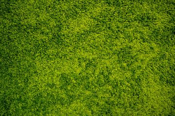 Green Carpet Background