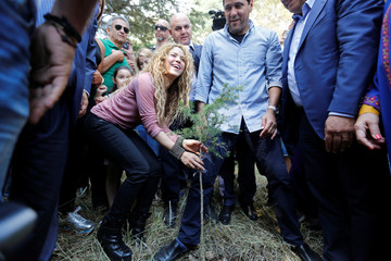 Colombian singer Shakira plants a cedar tree during her visit to Tannourine Cedars Reserve, in Tannourine