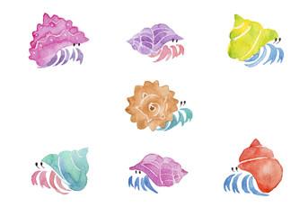 カラフルなヤドカリ 水彩イラスト