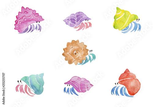 カラフルなヤドカリ 水彩イラストfotoliacom の ストック写真と