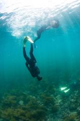 3人で潜る輪島の海女のチームプレー