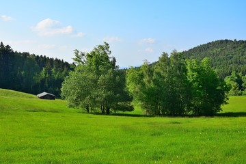 Bavarian landscape with meadows, woods, trees and a barn under a blue sky with a few clouds. Upper palatinate, county of Cham.