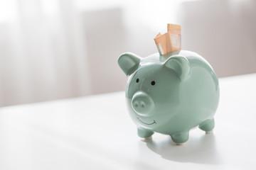 Pastell grünes Porzellan Sparschwein mit 2 50€ Scheinen um für Finanzierung, Rente, Vorsorge oder finanzielle Freiheit zu Sparen
