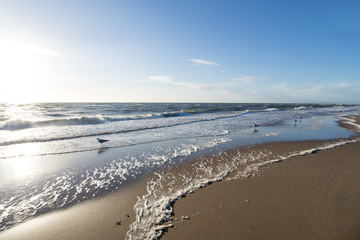 Dutch North Sea coast near Katwijk aan Zee