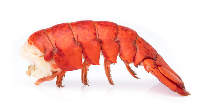 tail of Shrimp Lobster isolated on white background