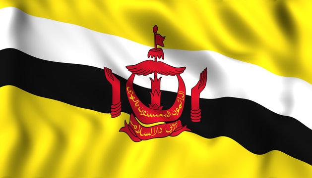 Brunei flag waving Symbol