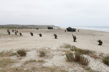 Canadian soldiers with the Royal 22e Regiment conduct amphibious assault operations, leaving AAV-P7/A1 assault amphibious vehicles during a Rim of the Pacific (RIMPAC) exercise with U.S. Marines at Camp Pendleton