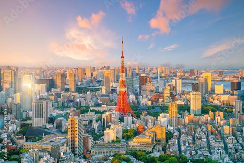 Fotomurales Tokyo skyline  with Tokyo Tower in Japan