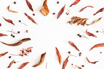 Autumn composition. Frame made of dried autumn leaves on white background. Flat lay, top view, copy space