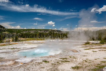 Hot thermal spring in Yellowstone