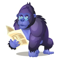 Funny animated gorilla reading a book isolated on white background. Vector cartoon close-up illustration.