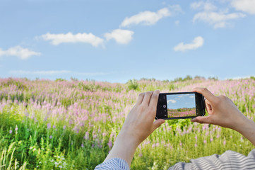 photography of nature on the phone