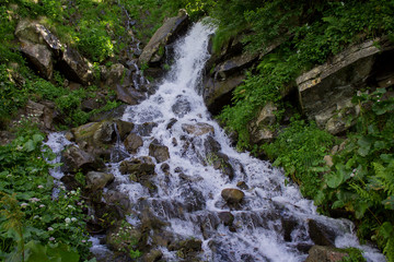 Photo of small waterfall surrounded by wildflowers and greenery in the Dzenbronia mountains landscape