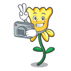Photographer daffodil flower mascot cartoon