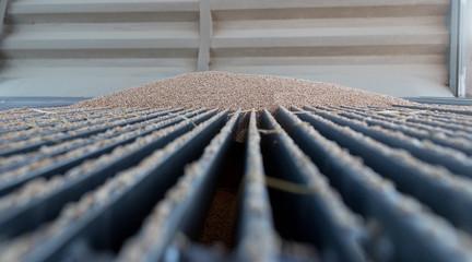 Blé sur grille du silo