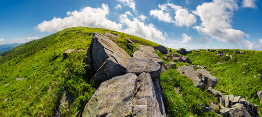 panorama of gorgeous mountainous summer landscape. huge rocky formations on the steep grassy slopes. beautiful cloud formation on the blue sky. Ukrainian Carpathians. absolute freedom concept