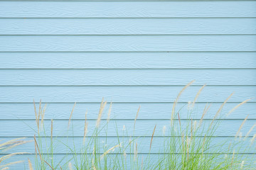 Grass flower with blue soft pastel wood texture natural background.