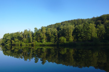 Calm river with many reflections of the trees and the forest in front of a clear blue sky