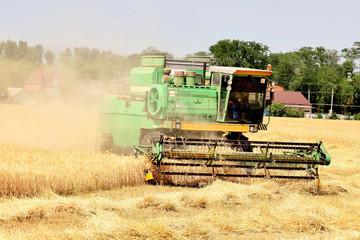 зерноуборочный комбайн убирает пшеницу в жаркий летний день