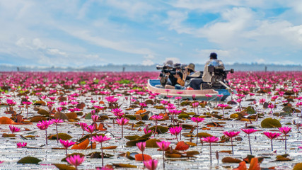 Landscape of fresh water lake with plenty of blooming red lotus and a taxi boat carry tourist travel around at Thalaynoi national reserve, Phatthalung province sount of Thailand