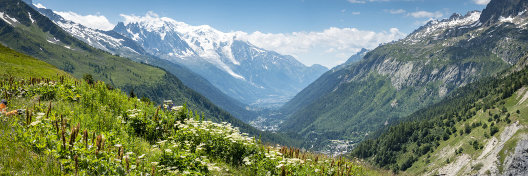 a view of the chamonix valley from the alpine mountains in the Vallorcine area with foreground of alpine meadows on a clear summer day with blue sky and bright clouds
