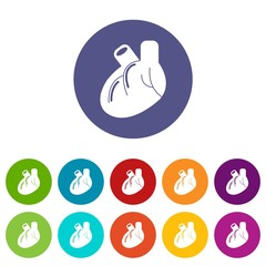 Heart organ icons color set vector for any web design on white background