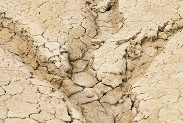 cracks and dry ditches remains in an arid landscape environmental disaster drought concept