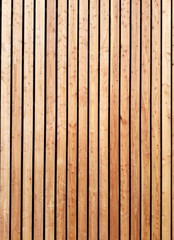 The siberian larch facade is made of wooden planks