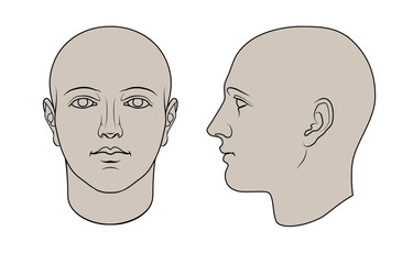 Hand drawn human head in face and profile. Colorable flat vector isolated on white background. The drawings can be used independently of each other.