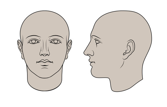 Hand drawn androgynous, gender-neutral human head in face and profile. Colorable flat vector isolated on white background. The drawings can be used independently of each other.