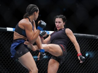 MMA: UFC Fight Night-Boise-Zingano vs Reneau