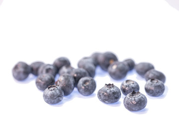 blueberry in white background