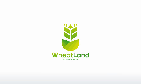 Wheat Grain Land logo designs concept vector, Agriculture wheat logo