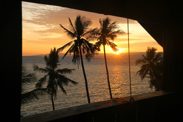 Sunset views and silhouette of palm trees by the sea from a hut in Apo Island, Visayas, Philippines. Exotic beach hut, tropical paradise, resort, summer vacation, travel destination concepts