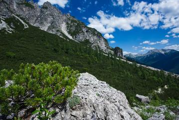 Panorama lungo la salita al Rifugio Pacherini da Forni di Sopra