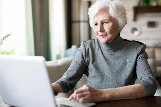 Attractive senior woman with white hair sitting at the table and looking at computer