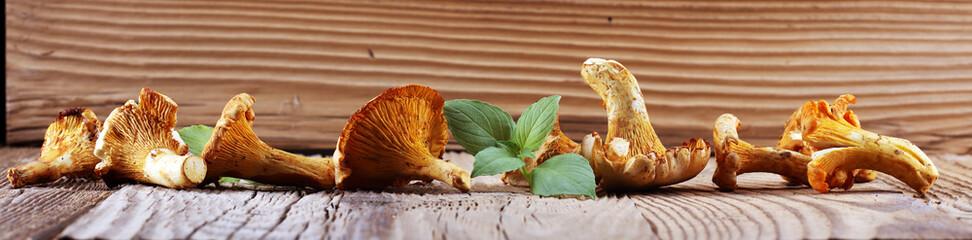 Mushrooms chanterelle on table. Raw wild mushrooms chanterelles. Composition with wild mushroom