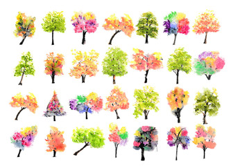 Collection of watercolor trees on white background, hand drawn, tree art