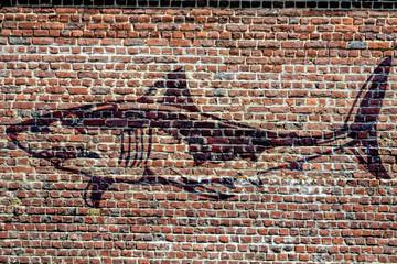 Graffiti représentant un requin