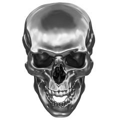 Metallic Human Skull