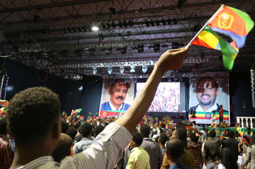 Civilian waves the Ethiopian and Eritrean national flags during a concert at the Millennium Hall in Addis Ababa
