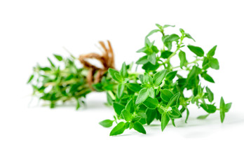 Thyme fresh herb closeup isolated on white